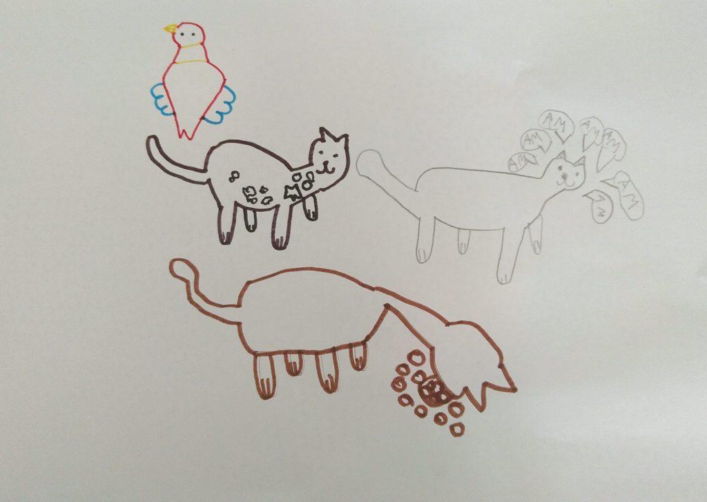 Le chat de Léna-Liam